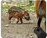 Yanteng Cojín de ratón de Cerdo Cute Animal, Brush Ear Pig Mouse Pad Mat