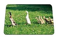 22cmx18cm マウスパッド (アヒルアヒルの子鳥ファーム家族) パターンカスタムの マウスパッド