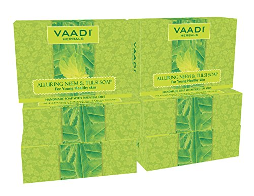 Neem Tulsi Bar Soap with Aloe Vera Extracts, Vitamin E and Tea Tree Oil - Handmade Herbal Soap with 100% Pure Essential Oils - ALL Natural - Each 2.65 Oz - Pack of 6 (16 Oz) - Vaadi Herbals