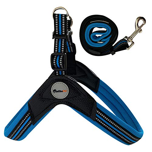 GEILHOPET No Pull Dog Harness and Leash, Waterproof, Chew/Escape Proof Male/Female Dogs, No-Slip, Durable and Adjustable, Breathable, Military/Service/Pet Dog,(Large Blue)