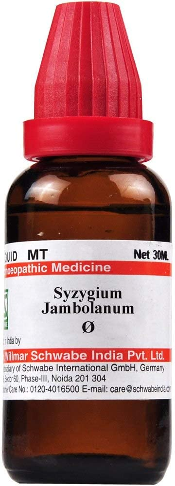 Pack of Popular products 3 Dr Willmar Syzygium India Jambol Schwabe Homeopathic Max 67% OFF