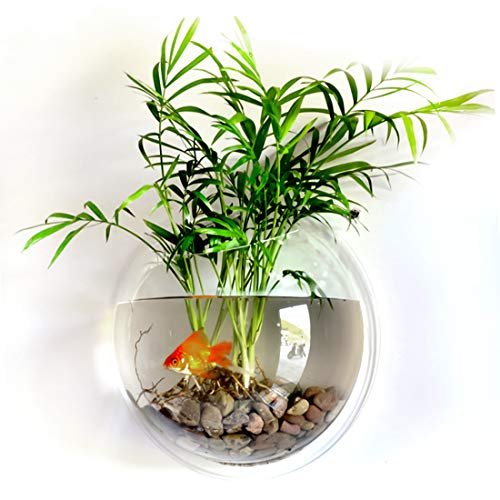 RuiyiF Fish Tank Wall Mounted, Wall Hanging Acrylic Fish Bowl Small Aquarium for Beta Fish Goldfish Home Decor Size 6 Inch