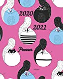 2020-2021 Meow Planner: 2-Year Monthly Planner 8x10 Inches Pocket Size |  Agenda Planner For 24 Months Calendar, Appointment Notebook | Schedule, ... List, Agenda | Get Organized. Get Focused.