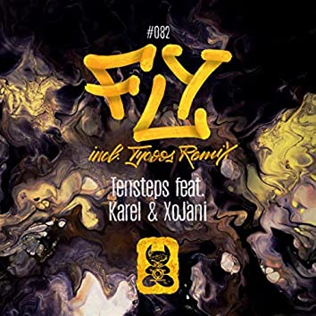 Fly (incl. Tycoos Remix)
