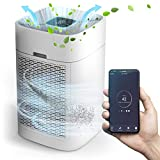 Il purificatore d'aria PureAir100 Premium rimuove fino al 99,99% di tutti i virus nell'aria, fino a 100 m², potente Air Purifier con filtro HEPA H13 + filtro ai carboni attivi + filtro antipolline