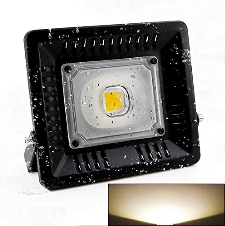 LED Light CELINEZL 30W Wasserdichte LED-Flutlichtlampe, Lichtstrom   2400LM, PF  0,9, RA  80, AC 170-300V (Farbe   Farbe2)