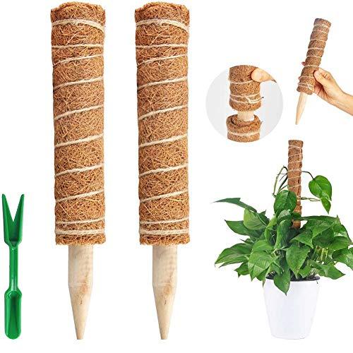 AOIO Soporte para Plantas tótem de Coco, 2 Paquetes Palo de Tótem de Coco Palo de Musgo de Coco Tótem de Musgo de Coco para Enredaderas Soporte de Plantas Extensión Escalada Plantas de Interior