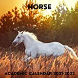 Horse Academic Calendar 2021-2022: September 2021 - December 2022 Square Academic Calendar Gift For Horse Lovers | Mom or Dad Present Idea For Men & ... Photo Book Monthly Planner With USA Holidays