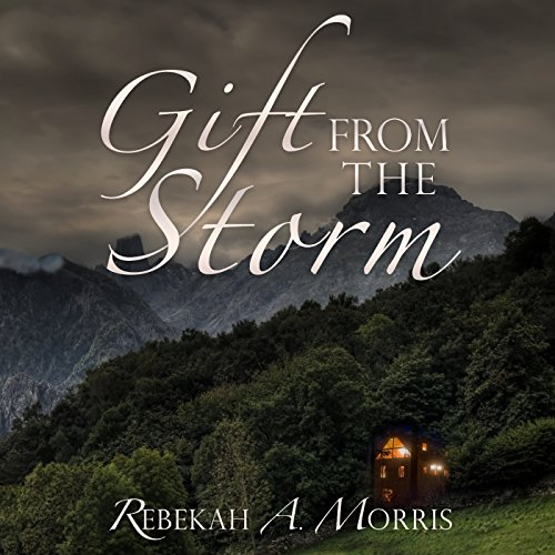 Gift from the Storm audiobook cover art