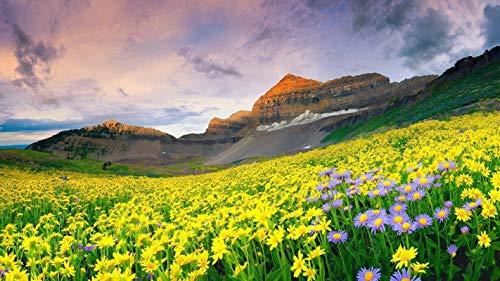 lxlwxh541 Diamondpainting Canyon Valley Flowers Malerei Hirsch Diamant 40X50Cm Round Geschenk