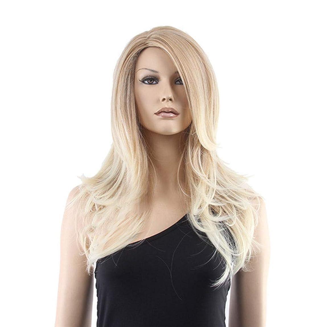 北西問い合わせ簡単にYrattary 女性用ウィッグリネンマイクロロールロングヘアと前髪の人工的なかつら合成毛レースのかつらロールプレイングかつら (色 : Photo Color)