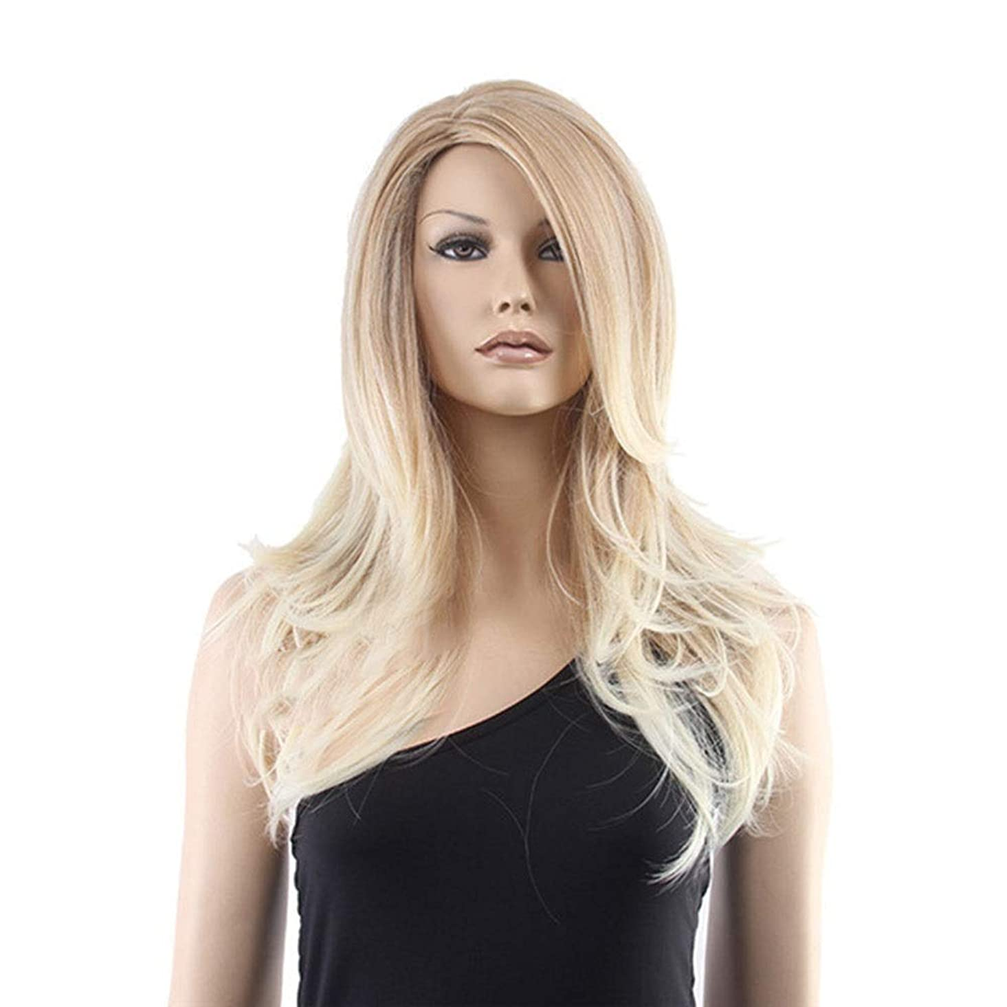 内なるストライドとまり木BOBIDYEE 女性用ウィッグリネンマイクロロールロングヘアと前髪の人工的なかつら合成毛レースのかつらロールプレイングかつら (色 : Photo Color)
