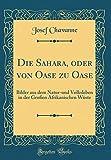 Die Sahara, oder von Oase zu Oase: Bilder aus dem Natur-und Volksleben in der Großen Afrikanischen Wüste (Classic Reprint)