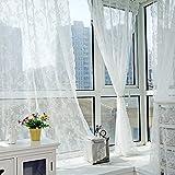 Baoer Cortinas transparentes de encaje floral, cortinas bordadas de encaje, cortina de gasa de punto, para dormitorio, sala de estar, barra de bar, estilo retro, color blanco, 145 x 260 cm
