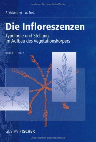 Die Infloreszenzen. Band II, Teil 2: Typologie und Stellung im Aufbau des Vegetationskörpers