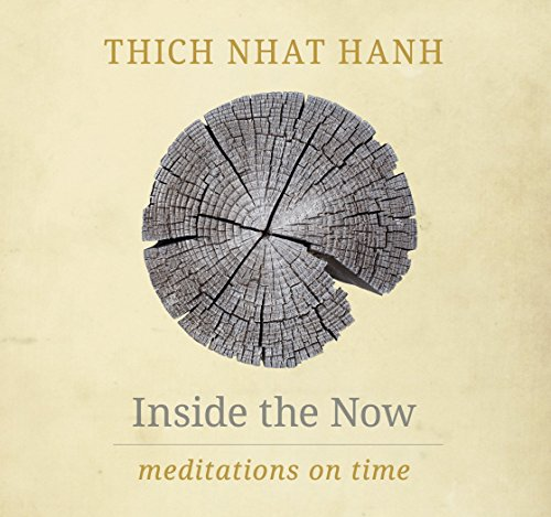 Inside the Now: Meditations on Time