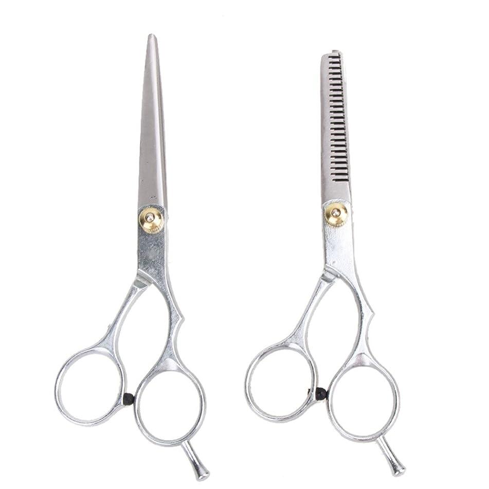 2 PCS 6 Inches Thinning Scissor Scissors Hair Styling Tools