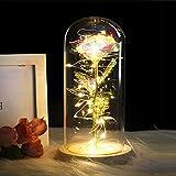 XYFL Ewige Rose Blumen Kristall Schmuck Licht LED Lichterketten Damen, Muttertagsgeschenke Geschenke Hochzeitstag Valentinstag -