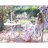 油絵 数字キットによる絵画 大人 子供と初心者 のどかなバルコニーチェアガール キットによる絵画 塗り絵 手塗り DIY絵 デジタル油絵 40x50センチ (フレームレス)