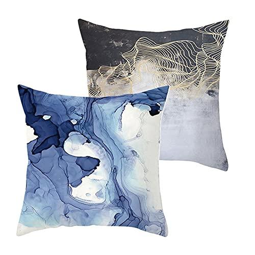 Pack de 2 Fundas de Cojines Representación azul Funda de Almohada Cuadrado Terciopelo Suave con Cremallera Invisible para Sofá Coche Decor para Hogar Throw Pillow Case Regalo J2295 Pillowcase_50x50cm