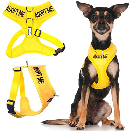 Dexil Limited Adopt ME Yellow Color Coded Non-Pull Front and Back D Ring Padded and Waterproof Vest Dog Harness Donate to Your Local Charity (XS)