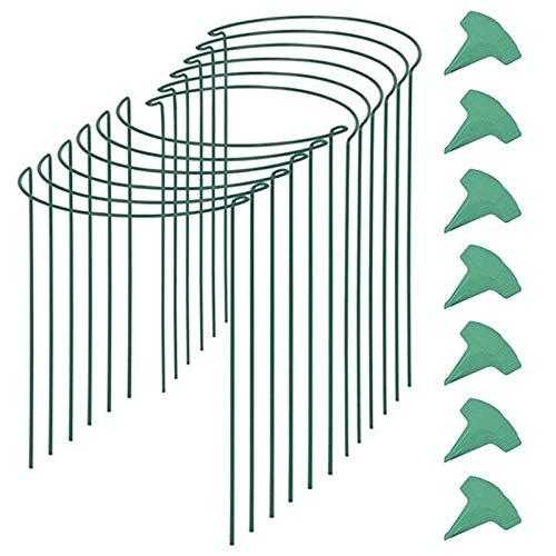 Mefeny 12 Packungen 15,7 Zoll Halb Runder Garten Pflanzen StüTz mit 15 StüCke Pflanzen Etiketten, Metall Garten Rand StüTzen