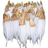 Xinlie Plumas de Ganso Oro Sumergido Blanco Natural Plumas de Gallo Manualidades Decoración Oro Natural Plumas de Gallo Manualidades Decoración para Disfraces Hats, Hogar Bricolaje50 Piezas (Blanco)