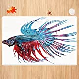 Alfombra de baño Antideslizante,Acuario, Fantástico pez Betta de Cerca Pez dragón con Cola de Flecos Vida acuática Tropical Decor Apto para Cocina, salón, Ducha (40x60cm)