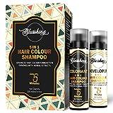 BLUSSHING Instant Hair Colour Shampoo Damage Free For Men & Women 200ml(Natural Black)