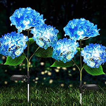 Solar Lights Outdoor Decorative - 2 Pack Hydrangea Solar Garden Stake Lights Waterproof and Realistic LED Flowers Powered Outdoor In-Ground Lights for Garden Lawn Patio Backyard  Blue