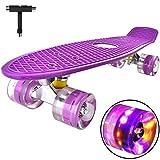 Mini Cruiser Skateboard Retro Komplettboard, 55cm Vintage Skate Board mit Kunststoff Deck und...