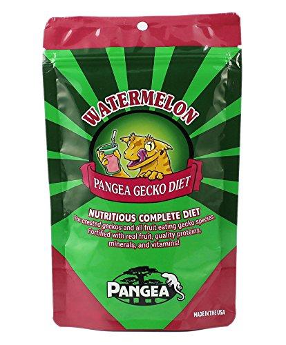 Pangea Fruit Mix Watermelon Mango Complete Gecko Diet - Kronengeckofutter (57 g)
