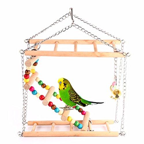 Ogquaton Jouet /à m/âcher pour Morsure /à Cage Cage Perroquet Suspendue de qualit/é sup/érieure pour Oiseaux