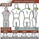 Zoom IMG-1 rdx sollevamento pesi cintura palestra
