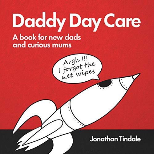 Daddy Day Care audiobook cover art