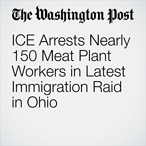 ICE Arrests Nearly 150 Meat Plant Workers in Latest Immigration Raid in Ohio copertina
