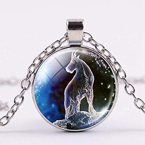 Liuqingzhou Co.,ltd 12 constelación Collar Capricornio Zodiaco Galaxy Colgante Collar Mujeres Hombres joyería Regalo de cumpleaños