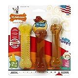 Nylabone Flavor Frenzy Power Chew Triple Pack...