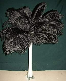 Best individual feathers for sale Reviews