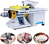 10000RPM Mini Table Saws Multifunctional Jewelry Polishing Machine 110V 350W, DIY Lapidary Equipment Benchtop Buffer, Lathe Machine Grinder for Jewelry Rock Carving&Polishing&Cutting US STOCK
