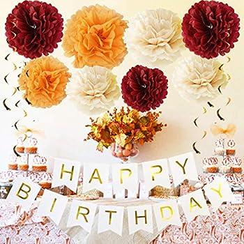 Fall Birthday Party Decorations Burgundy Champagne Orange Tissue Pom Pom Happy Birthday Banner Fall Party Decorations/30th Birthday Decorations/Burgundy Birthday Decorations