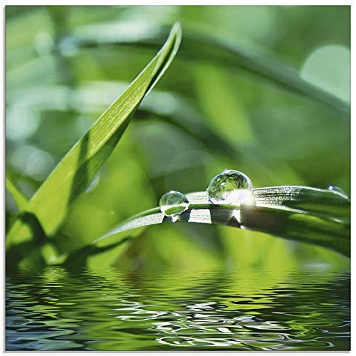 Artland Glasbilder Wandbild Glas Bild einteilig 20x20 cm Quadratisch Natur Botanik Pflanzen Gräser Wassertropfen Gras Sommer Sonne Grün T5SE