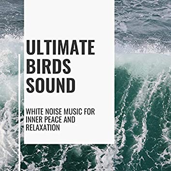 Ultimate Birds Sound - White Noise Music for Inner Peace and Relaxation
