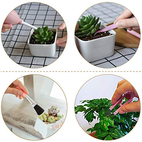 Melphoe Puppy's Mom 12 Pieces Mini Garden Hand Transplanting Succulent Tools Miniature Planting, Set for Indoor Fairy Care, Potting, Cactus, Houseplant, Bonsai Tools, Bonsai Kit (Pink)