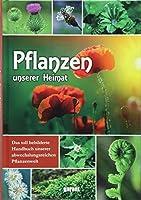 Pflanzen unserer Heimat: Das toll bebilderte Handbuch unserer abwechslungsreichen Pflanzenwelt