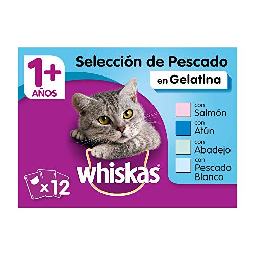 Whiskas Comida Húmeda para Gatos Selección Pescados en Gelatina, Multipack (4 cajas x 12 bolsitas x 100g)