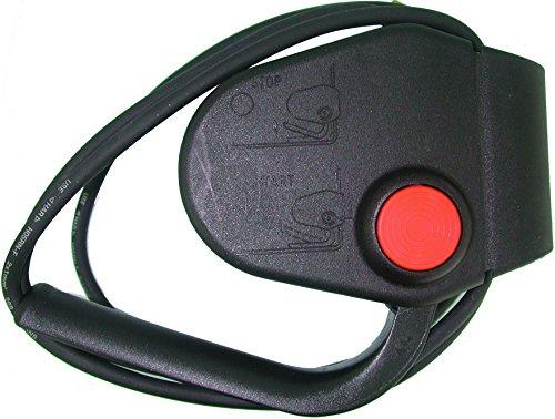 Greenstar 4890–Interruptor de seguridad para cortacésped eléctrico 5/5A Cable H05RN F 2x 1,0x 1,8m IP44