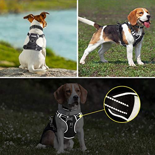 Arnés para perro Winsee, arnés para mascotas sin tirones con ...