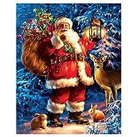 サンタクロースクリスマス5Dフルドリルダイヤモンド絵画キット、ラインストーン刺繍アートクラフトDIYホームホールの壁の装飾、美しいダイヤモンドクロスステッチ santa5-30*40cm