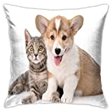SHUJIA Funda de cojín para perro, cachorro, gatito, adorable impresión de fotografía, 45,7 x 45,7 cm